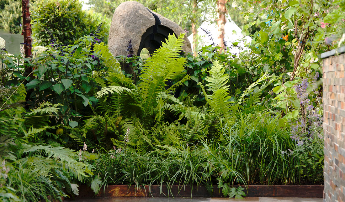 Steve Dimmock - garden designer in Surrey