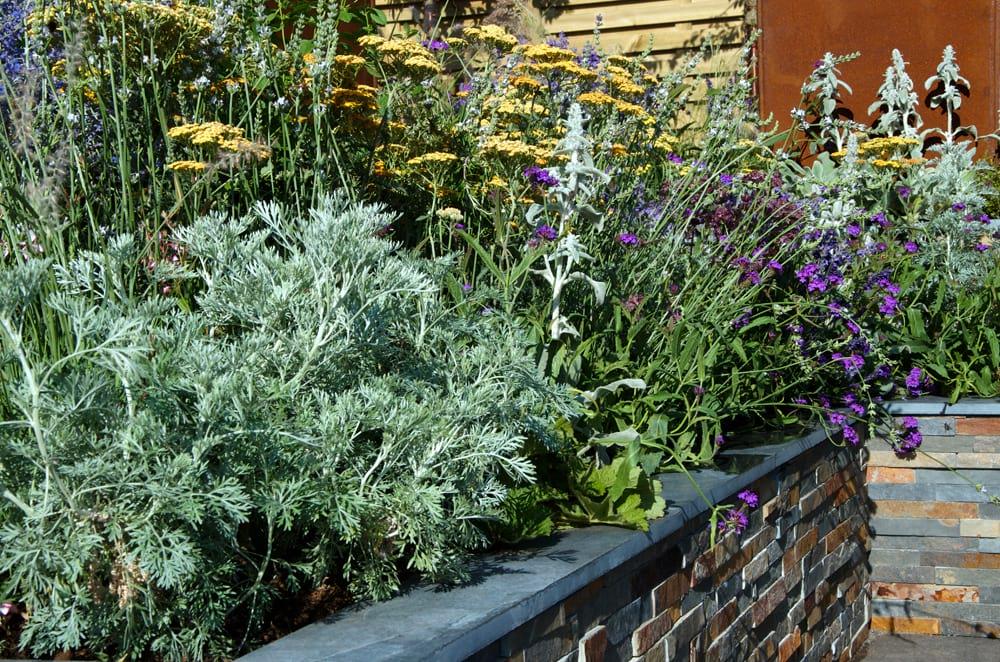 Hampton Court Flower Show 2018 – RNIB Community Garden designed by Steve Dimmock